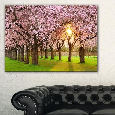 Designart Fascinating Springtime Cherry Scenery Landscape Canvas Art Print
