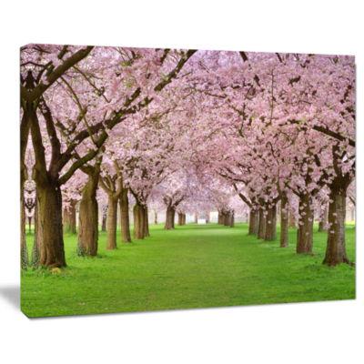 Designart Stunning Cherry Blossoms Plenitude Landscape Canvas Art Print