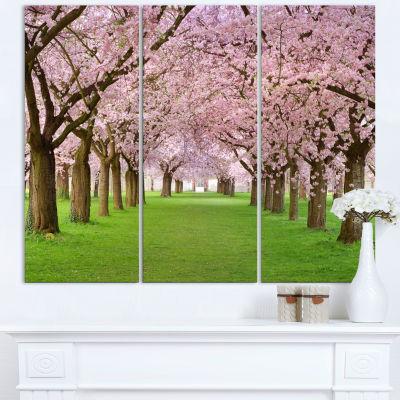 Designart Stunning Cherry Blossoms Plenitude Landscape Canvas Art Print - 3 Panels