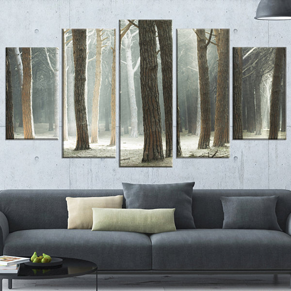 Design Art Maritime Pine Tree Forest With Rays Forest Canvas Art - 5 Panels