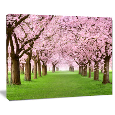 Designart Gorgeous Cherry Trees In Full Blossom Landscape Canvas Art Print