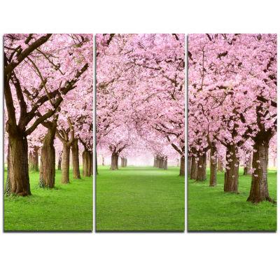 Design Art Gorgeous Cherry Trees In Full Blossom Landscape Canvas Art Print - 3 Panels