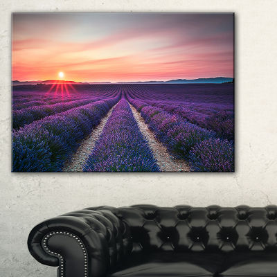 Designart Endless Rows Of Lavender Flowers ModernLandscape Wall Art Canvas