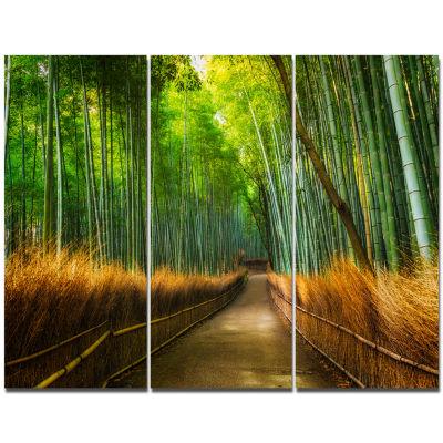 Designart Arashiyama Bamboo Grove Japan Forest Canvas Artwork - 3 Panels