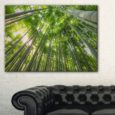 Design Art Peaks Of Bamboo In Kyoto Forest Canvas Artwork