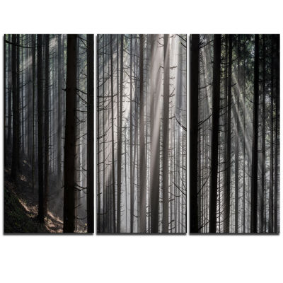 Design Art Sunbeams Peeking Through Dark Forest Canvas Art Print - 3 Panels