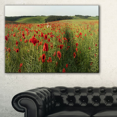 Design Art Field Of Red Poppies Flowers Landscape Artwork Canvas