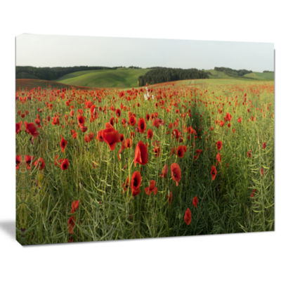 Designart Field Of Red Poppies Flowers Landscape Artwork Canvas