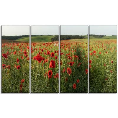 Designart Field Of Red Poppies Flowers Landscape Artwork Canvas - 4 Panels