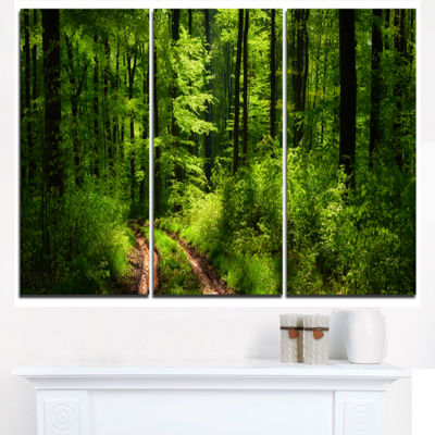 Designart Fascinating Greenery In Wild Forest Canvas Art Print - 3 Panels