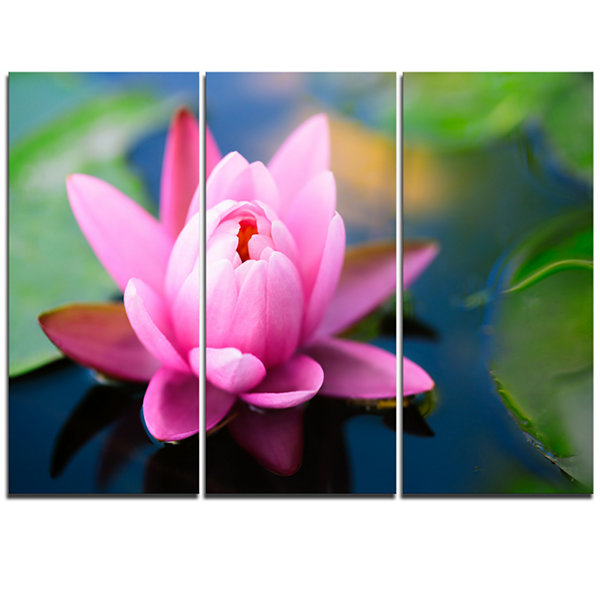 Designart Lotus Flower In The Pond Canvas Art Print - 3 Panels