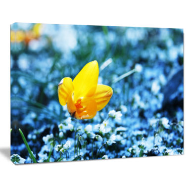 Design Art Beautiful Yellow Flower On Blue Art Canvas Print