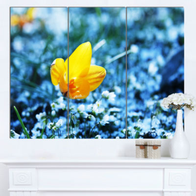 Design Art Beautiful Yellow Flower On Blue Art Canvas Print - 3 Panels