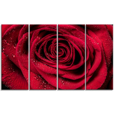 Designart Red Rose Petals With Rain Droplets Floral Art Canvas Print - 4 Panels