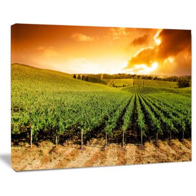 Designart Sunset Vineyard Panorama Wall Art Landscape