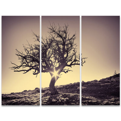Design Art Lonely Grey Tree In Mountain Wall Art Landscape - 3 Panels