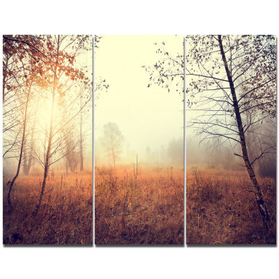 Designart Beautiful Natural Landscape With Trees Wall Art Landscape - 3 Panels