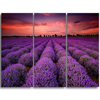 Design Art Red Sunset Over Lavender Field Wall Art Landscape - 3 Panels