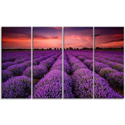 Design Art Red Sunset Over Lavender Field Wall Art Landscape - 4 Panels