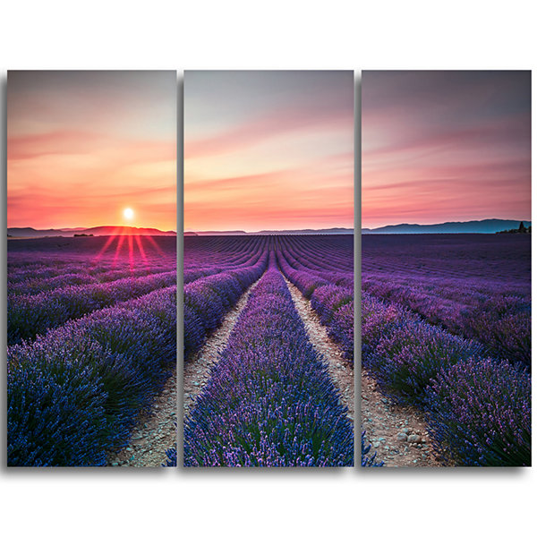 Designart Endless Rows Of Lavender Flowers ModernLandscape Wall Art Canvas - 3 Panels