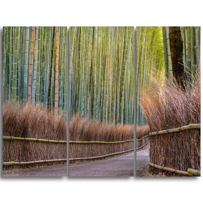 Design Art Pathway Inside Bamboo Forest Canvas Wall Art Print - 3 Panels