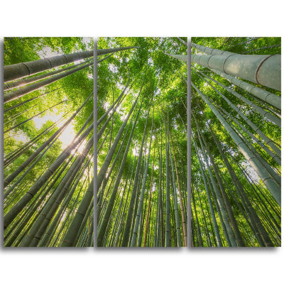 Design Art Peaks Of Bamboo In Kyoto Forest Canvas Artwork - 3 Panels