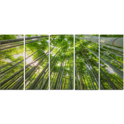 Designart Peaks Of Bamboo In Kyoto Forest Canvas Artwork - 5 Panels