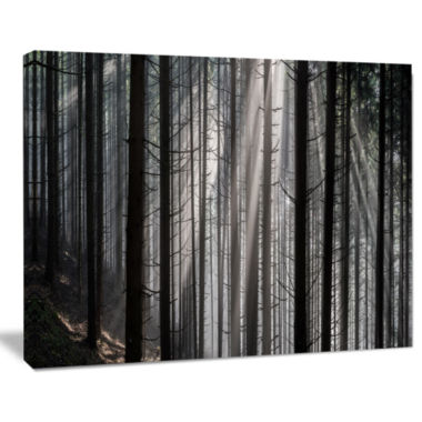 Designart Sunbeams Peeking Through Dark Forest Canvas Art Print