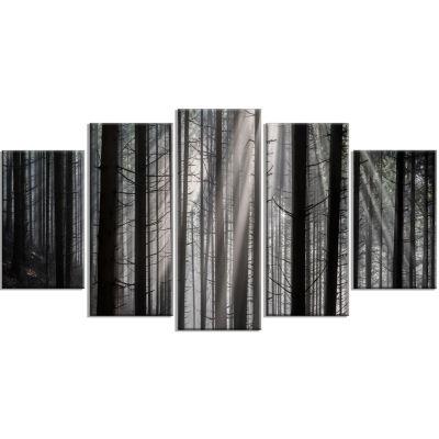 Designart Sunbeams Peeking Through Dark Forest Canvas Art Print - 5 Panels