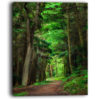 Designart Dreamy Greenery In Dense Forest Canvas Art Print
