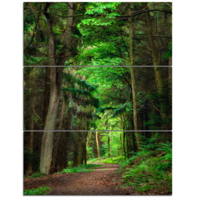 Design Art Dreamy Greenery In Dense Forest Canvas Art Print - 3 Panels