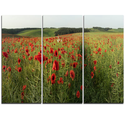 Design Art Field Of Red Poppies Flowers Landscape Artwork Canvas - 3 Panels