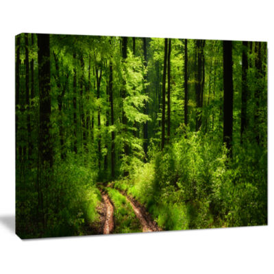 Design Art Fascinating Greenery In Wild Forest Canvas Art Print