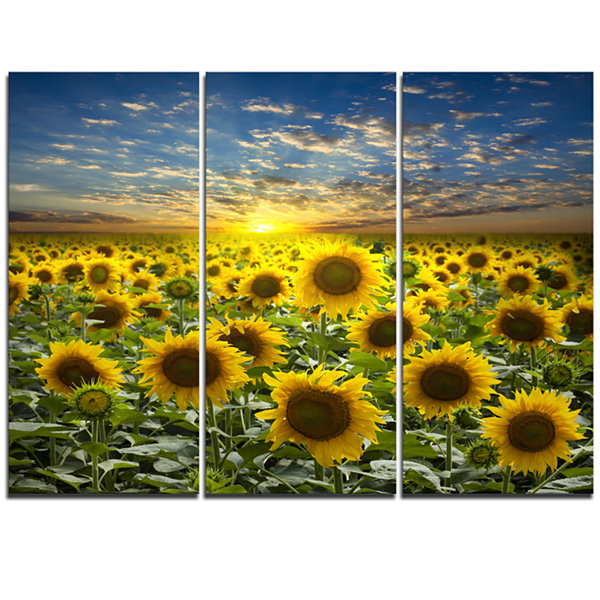 Designart Field Of Blooming Sunflowers Canvas WallArt - 3 Panels