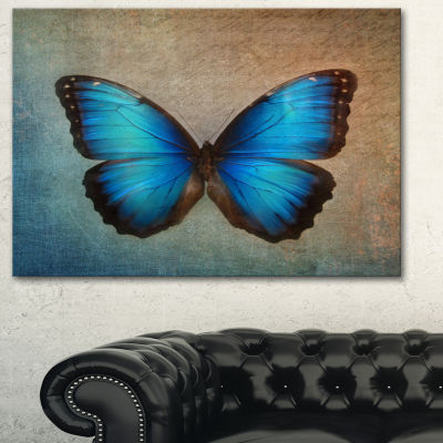 Designart Blue Vintage Butterfly Art Canvas Print