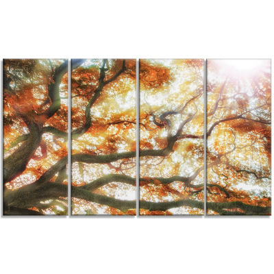 Designart Big Tree Photography Canvas Art Print -4 Panels