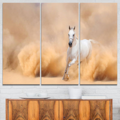 Designart Arabian Horse In Desert Storm Photography Canvas Art Print - 3 Panels