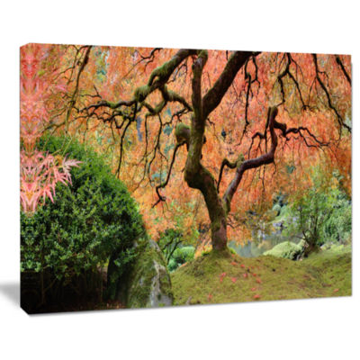 Design Art Old Japanese Maple Tree Landscape Photography Canvas Art Print