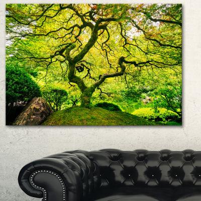 Designart Amazing Green Tree Photography Canvas Art Print