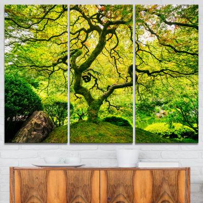 Design Art Amazing Green Tree Photography Canvas Art Print - 3 Panels
