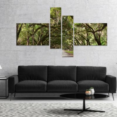 Designart Live Oak Tunnel Photography Canvas ArtPrint - 4 Panels