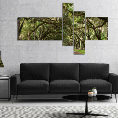 Designart Live Oak Tunnel Photography Canvas ArtPrint - 5 Panels