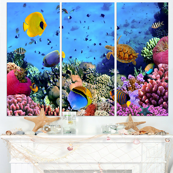 Designart Coral Colony And Coral Fishes SeascapeCanvas Art Print - 3 Panels