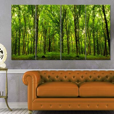 Designart Green Forest Landscape Photo Canvas ArtPrint - 4 Panels