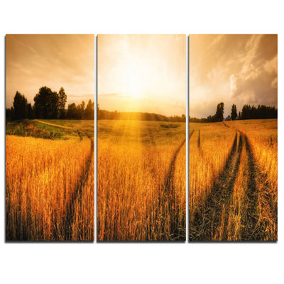 Designart Wheat Field At Sunset Panorama Photography Canvas Art Print - 3 Panels