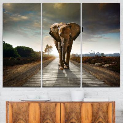 Designart Single Walking Elephant Photography Canvas Art Print - 3 Panels