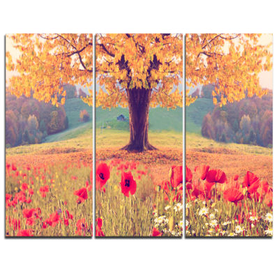Designart Landscape With Poppy Flowers PhotographyCanvas Art Print - 3 Panels