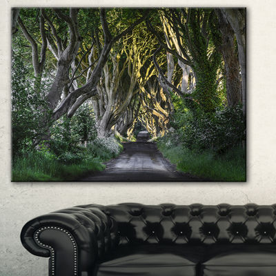 Designart The Dark Hedges Ireland Landscape Photography Canvas Art Print