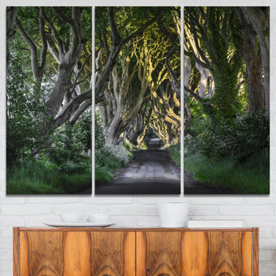 Designart The Dark Hedges Ireland Landscape Photography Canvas Art Print - 3 Panels