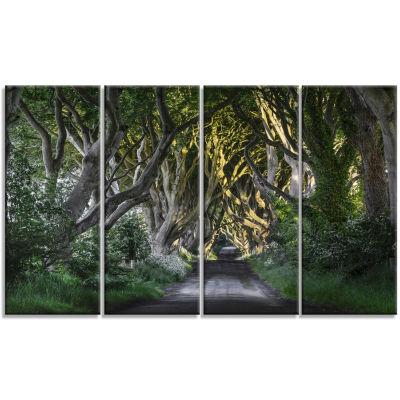 Design Art The Dark Hedges Ireland Landscape Photography Canvas Art Print - 4 Panels